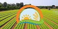 Bitkisel Üretim Genel Müdürlüğü Sözleşmeli Ziraat Mühendisi Alımı